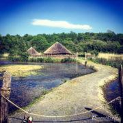 Irish National Heritage Park, Wexford